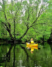 Day Three Canoe Gelise River